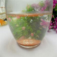 Popular 1x 100g Brine Shrimp Eggs Artemia Ocean Nutrition Fish Food Feeding gW