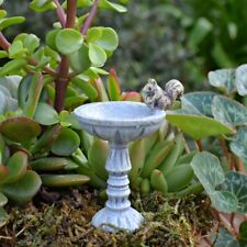 Squirrel Bird Bath Fairy cottage Home Garden Craft Décor