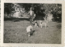 PHOTO ANCIENNE - VINTAGE SNAPSHOT - CHASSE CHASSEUR CHIEN - HUNTING HUNTER DOG