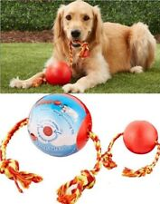 *Boomer Indestrucible Tough Durable Tuggo Water Weighted Ball & Rope Dog Toy