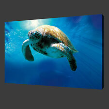 NOT Framed 12x20'' Canvas Print Pictures Sea turtles Home Office Decoration