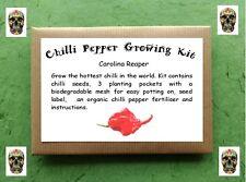 Chilli Pepper Growing Kit - Carolina Reaper