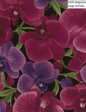Orchid Cotton Quilt fabric Timeless Treasures 3205 Megenta Large Floral on black