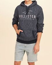 MENS GUYS HOLLISTER SIZE MEDIUM TEXTURED LOGO GRAPHIC HOODIE SWEATSHIRT NWT