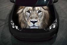 Lion Full Color Sticker, Car Hood Vinyl Wrap, Car Graphics Decals MH190