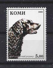 Dog Photo Head Study Postage Stamp Curly Coat 00004000 Ed Retriever Komi 2000 Mnh