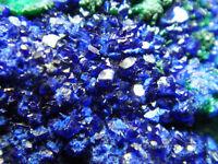 630g Verdurous Green MALACHITE Crystal Cluster with AZURITE Mineral Specimen