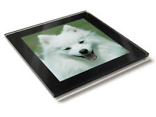JAPANESE SPITZ Dog Puppy Premium Glass Table Coaster with Gift Box
