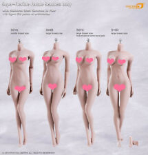 Phicen 1:6 Super-Flexible Female Seamless Body Middle Chest pale Skeleton S01A
