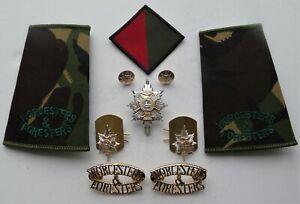 Worcestershire & Sherwood Foresters Regiment Cap/Collar Badges & Shoulder Titles