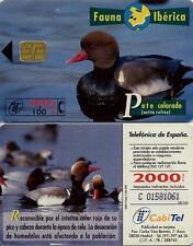 2000 PTA. Fauna Ibérica. Pato Colorado. CabiTel.