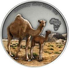 Kamerun 1000 Francs 2019 Dromedar Silver Ounce Antique Finish Kamel in Farbe