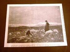 Il pastore Quadro di Cesare Maggi X Mostra di belle arti di Venezia nel 1912