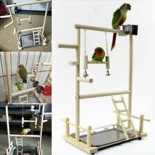 Birds Playstands Bird Playground Parrot Wood Perch Bridge Tabletop Swing Stands