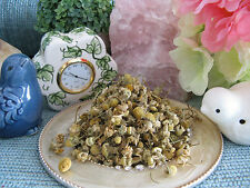 NEW DRIED NATURAL YELLOW CHAMOMILE FLOWER BUDS FOR POTPOURRI