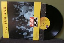 "Talking Heads ""Wild Wild Life"" 12"" Orig NM David Byrne Brian Eno"