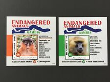 Gambia 2013 Endangered Animal Monkey Two Sheets MNH