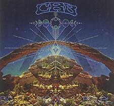 Chris Robinson Brotherhood - Big Moon Ritual (NEW CD)