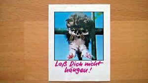 Original Duplo Sticker Aufkleber Kesse Kätzchen 1987 Serien-Bild Nr. 20 Katze
