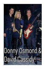 Donny Osmond & David Cassidy!: The Ultimate 70s Heartthrobs! by King, Steven