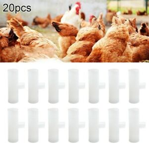 Automatic Pet Feeder Chicken Quail Poultry Bird Pheasant Feed Water Tool CYN