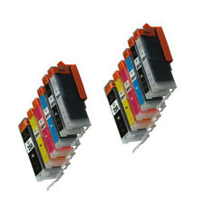 12 Canon PGI-250XL CLI-251XL Ink Set Fits Canon Pixma iP8720 MG6320 MG7120 GREY
