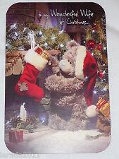 CHRISTMAS CARD WIFE PHOTO ME TO YOU TATTY TEDDY CUTE  BLUE NOSE BEAR FEMALE STK