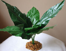 "Artificial Silk Aquarium Plant w/ Stone Base 11"" Peace Lily Dark Green Lg Leaf"