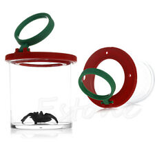 Insect Viewer Locket Box Jar Magnifier Bug Magnifying Loupe Watch Teaching Toy