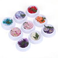 20G Dried Blume Epoxidharz Füller DIY Schmuck Füllung Nail Art Material Zubehör