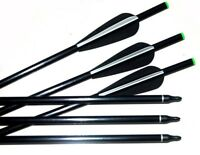 10 Fibreglass 17 inch Field Tip on/off Archery arrow Crossbow Broadhead