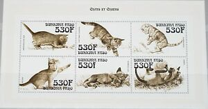 BURKINA FASO 1999 Klb 1670-75 1141 Cats Katzen Fauna Tiere Domestic Animals MNH
