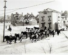 Horses Moving House in Winter1905 photo print Antique Vintage History SNOW #2