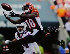 9050f273fe3 AJ Green Autographed Cincinnati Bengals 16x20 PF Photo Catch vs Bills- JSA  W  Wh