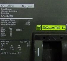 SQUARE D KAL36250 250 AMP CIRCUIT BREAKER *NEW IN BOX*