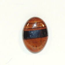 Tiger Iron 17x12mm Cabochon From Australia (5436)