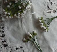 MINI ROSEBUDS WHITE 1cmLong Buds & 7.5cm long Stem 10Pk (14Colours Available)GTB