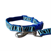 Blue Tiger Stripe Dog Collar and Matching Lead Set - Puppy and Dog