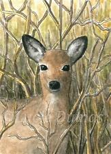ACEO art print Deer 17 fawn from original painting by L.Dumas