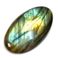 Cts. 31.00 Natural Full Multi Fire Labradorite Cabochon Oval Cab Loose Gemstone