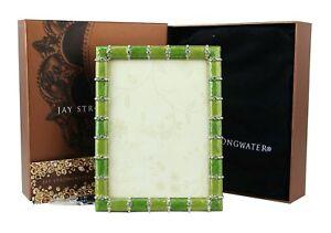 JAY STRONGWATER FLORA & FAUNA STRIPED FRAME SWAROVSKI NEW 5x7 BOX NEW USA