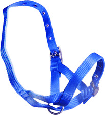 Blue Nylon TetheringRearing  Halter To Suit Calves, Bucks, Rams And Deer 3341