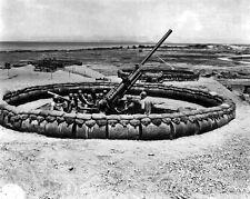 New 8x10 World War II Photo: 98th AAA Gun Battalion, 137th Group in Okinawa