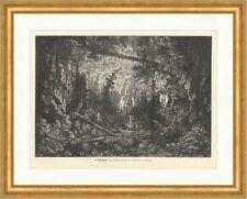 Die Wolfsschlucht Geister Nacht Burghardt Zauberer Skelett Wald Holzstich E 4896