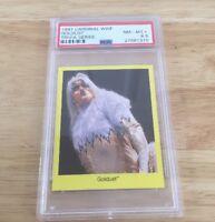 Goldust Wwf 1997 Cardinal Trivia Series Card Psa Graded 8.5 pop 1