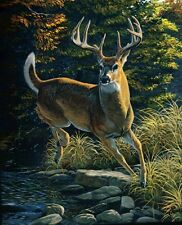 Deer BY THE RIVER BLANKET - FUZZY SOFT - 50 X 60 NEW - Royal Plush Raschel