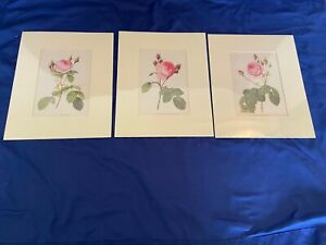 ANTIQUE LOT 3 BOOK OF ROSES FLOWER COLOR ART PRINTS REDOUTE'S