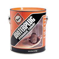 BASF  MasterSeal 590  Hydraulic Cement  2.5 lb.