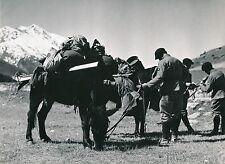 MODANE c. 1938 - Militaires  Chevaux  Skis  Le Charmieux Savoie - Div 10635