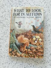 Ladybird Book - What to Look for in Autumn - Series 536